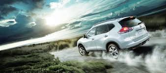 nissan rogue for dogs did nissan create the ultimate suv for dog lovers video inside
