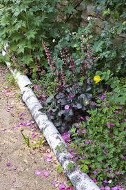 deco jardin a faire soi meme les 25 meilleures idées de la catégorie branches de bouleau sur