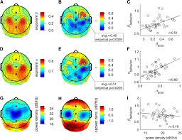 long range temporal correlations in resting state alpha