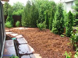 Landscaping Ideas For Backyard Privacy Backyard Backyard Privacy Landscaping Ideas Backyard