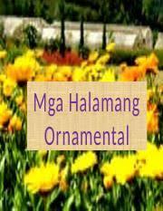 151046550 halamang ornamental pptx mga halamang ornamental