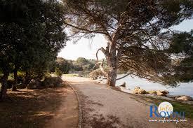 beaches in rovinj bay lone