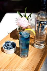vodka tonic lemon 142 best simple summer images on pinterest cocktails alcoholic