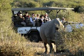 african safari car tourica tours your absolute african safari experience home