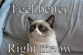 Feel Better Meme - feel better memes image memes at relatably com