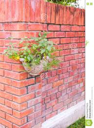Outdoor Wall Hanging Planters by Hanging Planter At Red Brick Wall In Garden Stock Photo Image