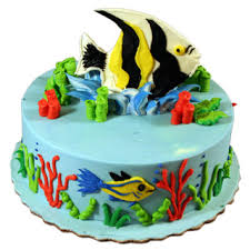 Tropical Themed Cake - tropical fish cakes decorated animals fish deerfields bakery
