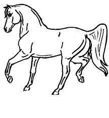 horse colouring sheets horse colouring