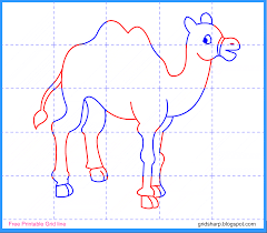 free grid line printable camel grid line drawing