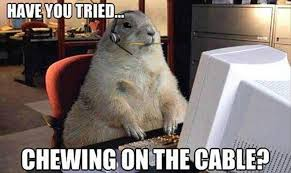 Cable Meme - have you tried chewing on the cable funny meme picture