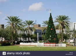 fort lauderdale fl florida christmas tree intracoastal waterway