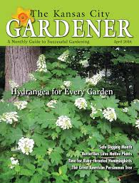 long island native plant initiative kcg 04apr16 by the kansas city gardener issuu
