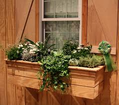 small vegetable garden box decorating clear
