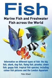 fish marine fish and freshwater fish across the world