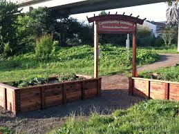 square foot gardening flowers best gardening images inspirations how to build raised flower beds