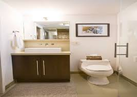 basement bathroom renovation ideas decoration basement bathroom renovation ideas with small basement