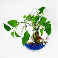 wall hanging planters vertical plant hanger plant hangers fun