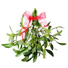 where to buy mistletoe moonlight and mistletoe dinner auction powell museum news events