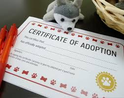 certificate dog birth certificate template sales strategies