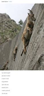 Rock Climbing Memes - i lik that mineral meme minerals and memes