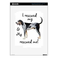 videos of bluetick coonhounds bluetick coonhounds computer laptop tablet u0026 video game skins