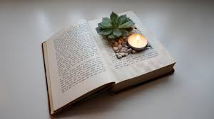 How To Make A Succulent Planter How To Make A Vintage Book Planter Youtube
