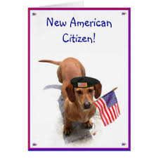 citizenship congratulations card new american citizen greeting cards zazzle