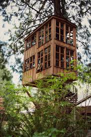 cool tree houses modern best house design cool tree houses theme