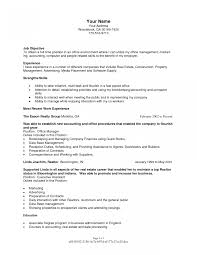 curriculum vitae sles for experienced accountants oneonta real estate appraiser jobription resume template agent