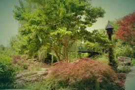 Overland Park Botanical Garden Overland Park Arboretum 5 Trevino