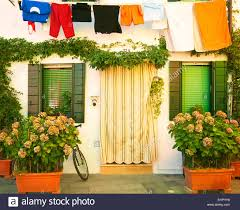 italy burano facade of a fisher house with bunches of hydrangea