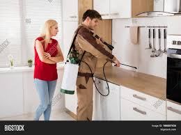 woman looking at exterminator worker spraying insecticide chemical