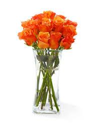 Long Stem Rose Vase Orange Long Stem Roses Only 49 00