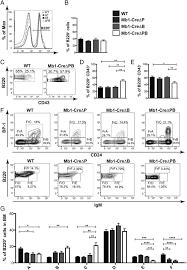 pu 1 regulates ig light chain transcription and rearrangement in