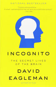 Blindness Chapter Summaries Book Summary Incognito By David Eagleman