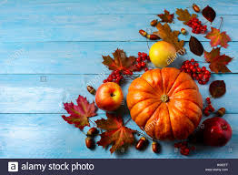 thanksgiving background image pumpkin apples berries acorns and fall leaves on blue
