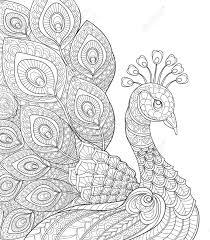 Paon Adulte Page à Colorier Antistress Main Doodle Noir Et Blanc