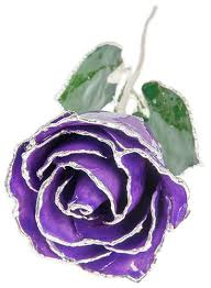 silver roses trimmed purple real