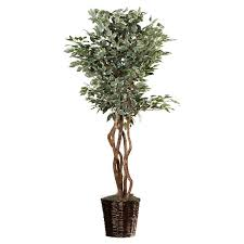 alcott hill artificial potted variegated ficus tree in
