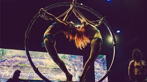 Anchorage Zoo Lights by Lucent Dossier Experience Los Angeles Tickets N A At The Wiltern