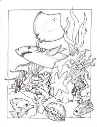 ocean animal coloring pages at children books online
