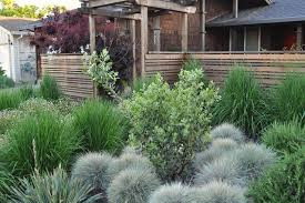 Landscape Mounds Front Yard - fencing and moss mounds houzz