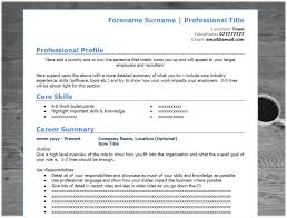 resume summary section how to read a resume free resume example and writing download modern blue cv