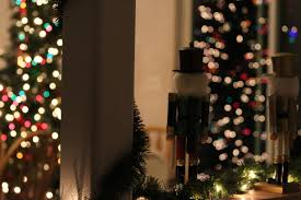 free images light holiday lighting decor christmas tree