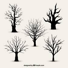 trees vectors photos and psd files free download