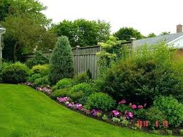 Garden Shrubs Ideas Shrubs To Plant Along Fence Landscaping Against A Fence Low