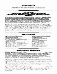 director of operations resume inspirational director of operations resume director resume