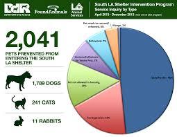 boxer dog adoption los angeles this los angeles shelter program is revolutionizing animal rescue