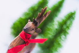 deer with new year tree pictures images and stock photos istock