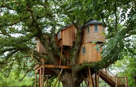 Small Home Construction Live In Harmony With Nature In These Super Tree House Cabins